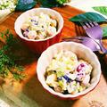 低糖質!お豆とキャベツのディル風味サラダ