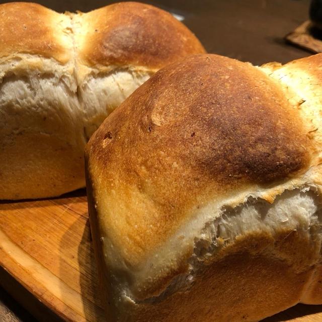 酵母パン作りの秘訣とお昼のパスタ