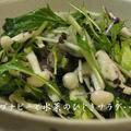 ブナピーと水菜のひじきサラダ
