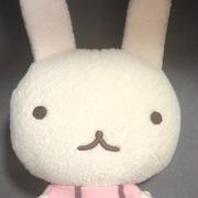 キタムラ 楽天市場店 長年愛用しているショルダーバッグ Y-1007  30%オフで販売!