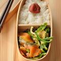 【お弁当のおかずレシピ】ちょっぴり小さめの鮭もボリューム感あるおかずに!2品15分弁当