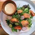 【カットして盛るだけ】スモークサーモンの彩りサラダ《Smoked salmon salad》