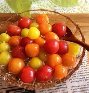 【野菜ひとつでベジつま】ミニトマトのおひたし