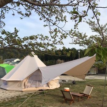 久しぶりにキャンプ