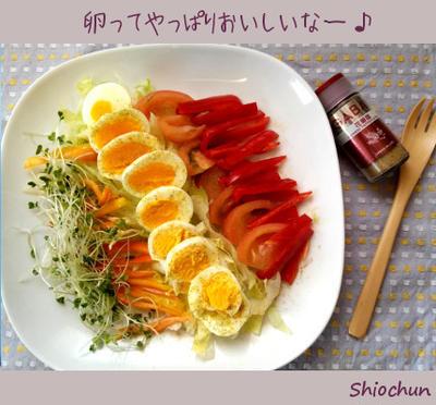 リセットダイエットのスペシャルメニューで卵を味わう