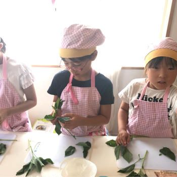 モロヘイヤは幻の野菜?