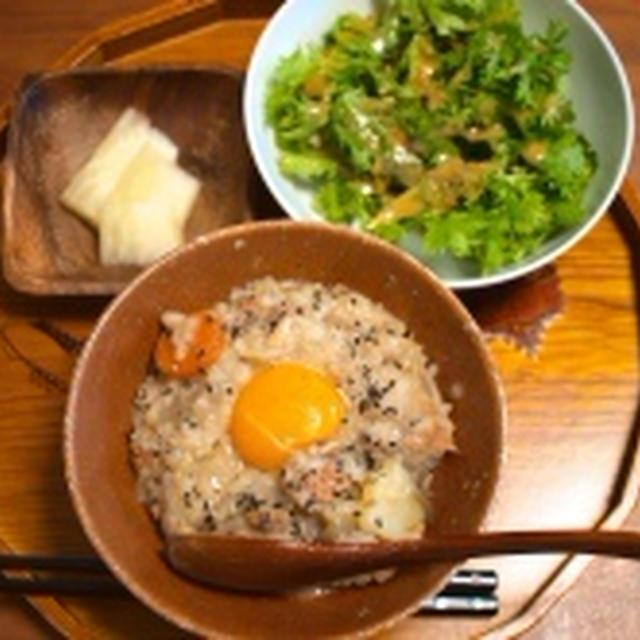 鮭の粕汁雑炊で朝ごはん & 高野豆腐でお弁当