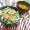 【簡単レシピ】アジのなめろう丼 by 簡単家庭料理研究家・鳴海なのかさん