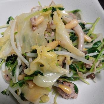 松の実入り挽き肉と豆苗の野菜炒め