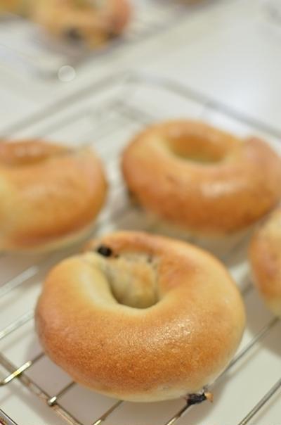 パン教室☆ブルーベリーベーグル
