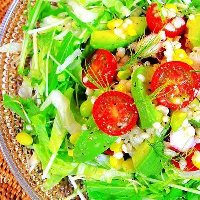 お肌に優しいハト麦と夏野菜のサラダ