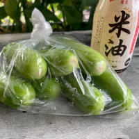 【米油×副菜】白きゅうりの簡単漬物