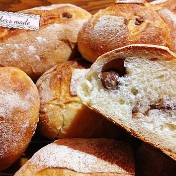 神祕難解的探險:麵包發酵