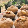 試作品は胡桃入りプチフランスパン~苺ジャムやクリームチーズ入り!!今朝の富士山