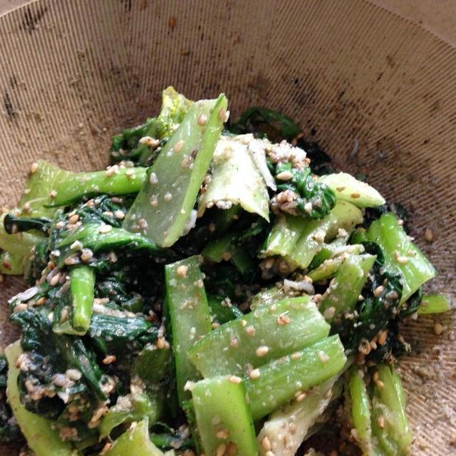 ゴマたっぷり小松菜のわさび和え