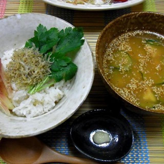 しらすの冷や汁・ニンニク味噌味!!