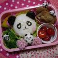 パンダちゃん♪弁当&塩麹漬け鮭焼き弁当