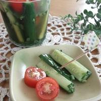 さっぱりヘルシー♪野菜のおつまみ!漬けるだけ~きゅうりとトマトのニラめんつゆ漬け