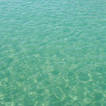白浜ダイビングスポット