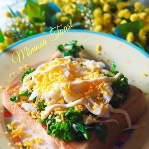 朝食やランチにいかが?「菜の花×食パン」レシピ