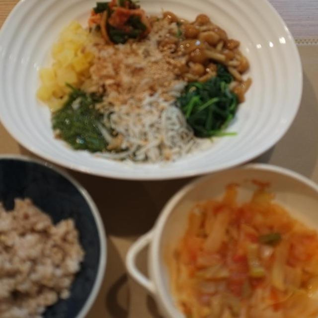 脂肪燃焼!ミラクルダイエットスープ♪ 【49日目】