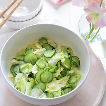 【作り置き】きゅうりとキャベツの塩もみ♡暑い夏向きサッパリ副菜♪ごはんが進みます!