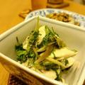 香味野菜と蒸し鶏ササミのナンプラー和え