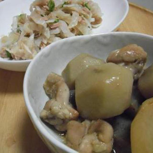 里芋と鶏肉の煮物 大根とオクラとツナのサラダ 焼きそば麺でちゃんぽん風