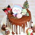 クリスマスケーキをシフォンケーキで作ってみました。