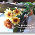 レシピブログの「花と料理でハロウィンを楽しもう♪」   モニター参加中】