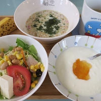 <朝食>フルグラ <お弁当>塩鮭・ウィンナー <夕食>チキン南蛮