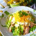【無限キャベツ】シャキッとキャベツとツナのミモザサラダ