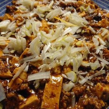 野朗飯流・花椒際立つ麻婆豆腐