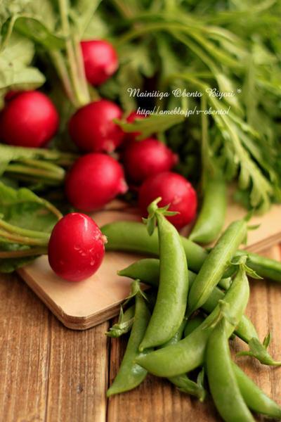 父の野菜達~春菊とモッツァレラのサラダ~