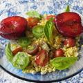 コーンとトマトとプラムのサラダ&ティラピアとザジキソース  8・14・2013