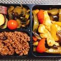 きゅうりの佃煮・阿波尾鶏ささみの黒酢煮弁当・カルディーで購入した水冷麺の夜勤弁当