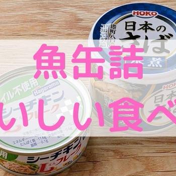 【レシピあり】魚缶詰のおいしい食べ方【臭い対策・保存方法】