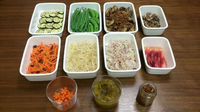 2016/6/5常備菜(茄子とひき肉の味噌炒めなど / 茄子をフライパンで焼くときのコツ)