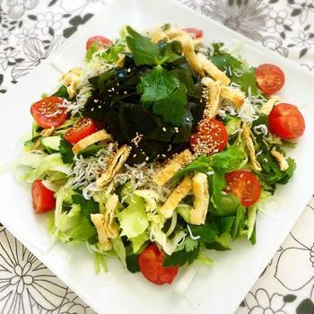 海藻類を毎日食べる!