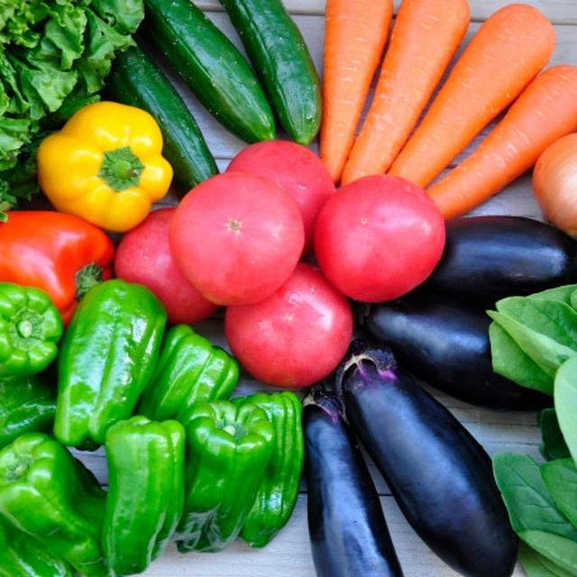 【さらに美味しくなる野菜の洗い方】ビタミンカラーの夏野菜を美味しく食べて元気UP!