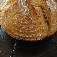 自家製酵母で作るパン お料理色々