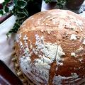パネトーネマザーを使ったパン