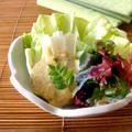 春キャベツとうどのごま味噌サラダ