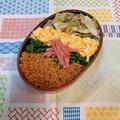 鶏そぼろ弁当(蕪とツナの香りソルト4種のペパーミックス炒めレシピあり)