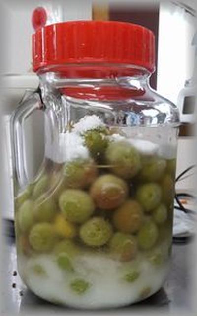 冷凍梅で作る梅ビネガー