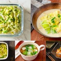 余った「野菜」で簡単! 白菜やにらなど野菜の作り置きおかずレシピ9選