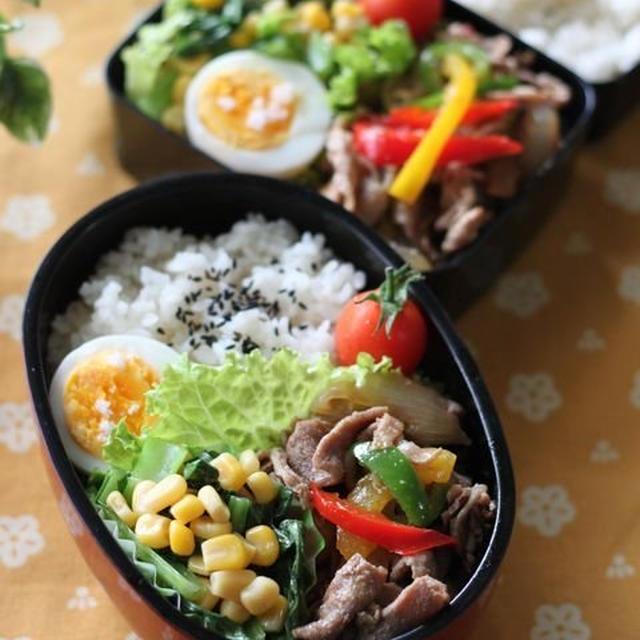 生姜焼き弁当 ☆ チキンタコライス♪