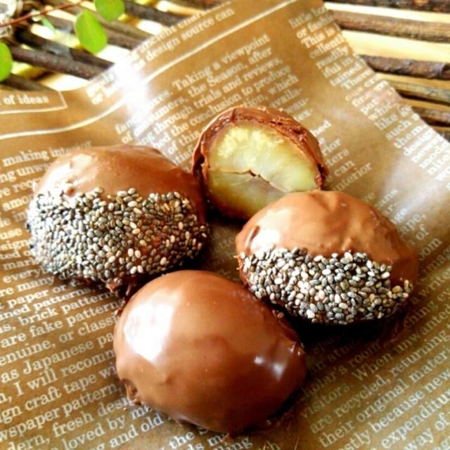 栗渋皮煮のチョコレートがけ
