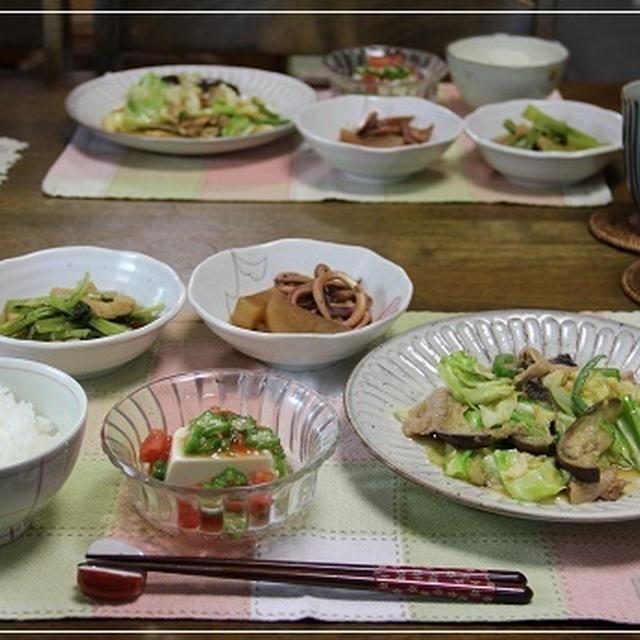 豚肉と野菜たっぷり味噌炒めなどいろいろ作ったけど・・・