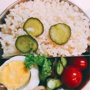 鮎と胡瓜の炊き込みご飯弁当